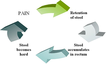 Pain-Retention Cycle in Constipation: Retention of Stool>Stool accumulates in rectum>Stool becomes hard>pain